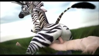 ZEBRA damsel COMPILATION (Straight wooly Yiff) {SFM}